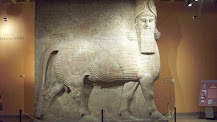 The Giant Assyrian Lamassu -- At the oriental Institute of the University of Chicago