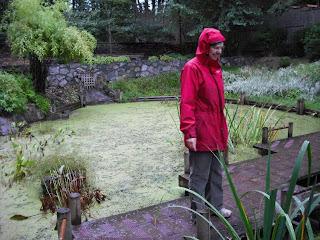 Pat in the rain