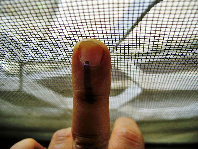 finger with indelible ink mark used for voting