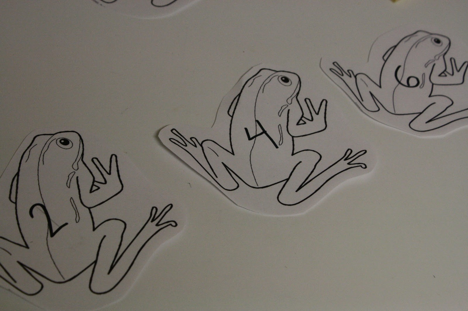 The Adventures Of Bear Frog Math