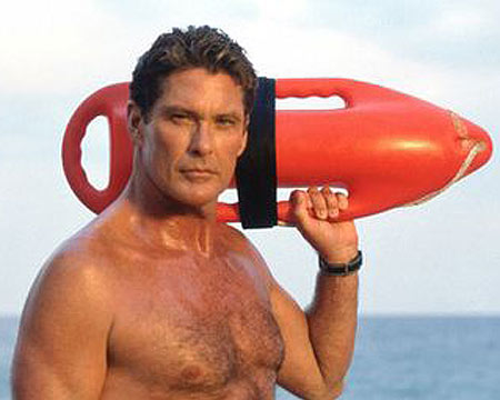 Group Of David Hasselhoff Puppies Wallpaper
