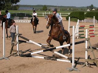 boxe pour chevaux a monter