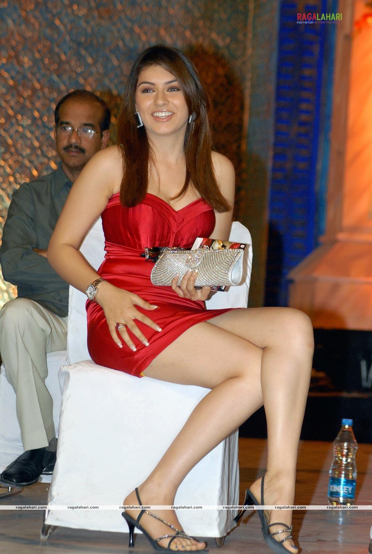 Sexy Actress Gallery Hansika Motwani 8-8841