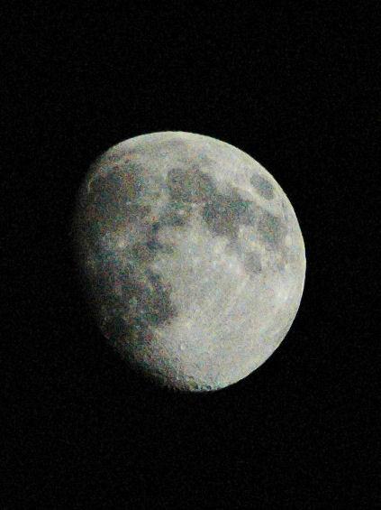 Photo Friday - November 19, 2010