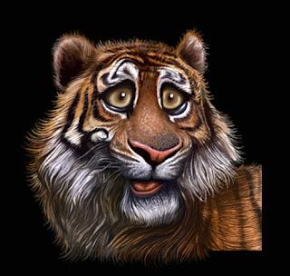 ILUSTRADOR-MONROY: Caricaturas realistas de animales