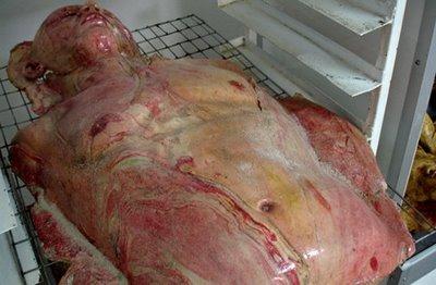 Potongan Tubuh Manusia Dijual di Jepang