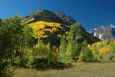 fall colors blanket the hillsides near the Maroon Bells