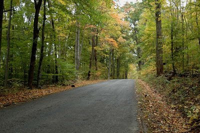 this is a lovely country road we traveled in Parke County, Indiana, last year