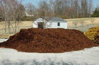 spreading this mulch pile is a pain in the patooi