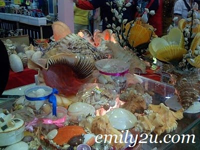 Seashells Handcraft