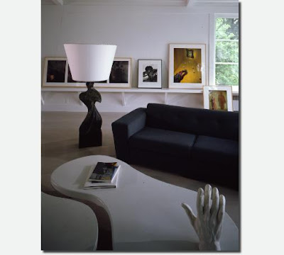 Steven Shadleys gallery-style living room from Katiedid
