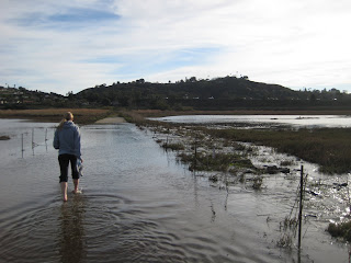 Anna wading across the flooded path in the San Elijo Lagoon