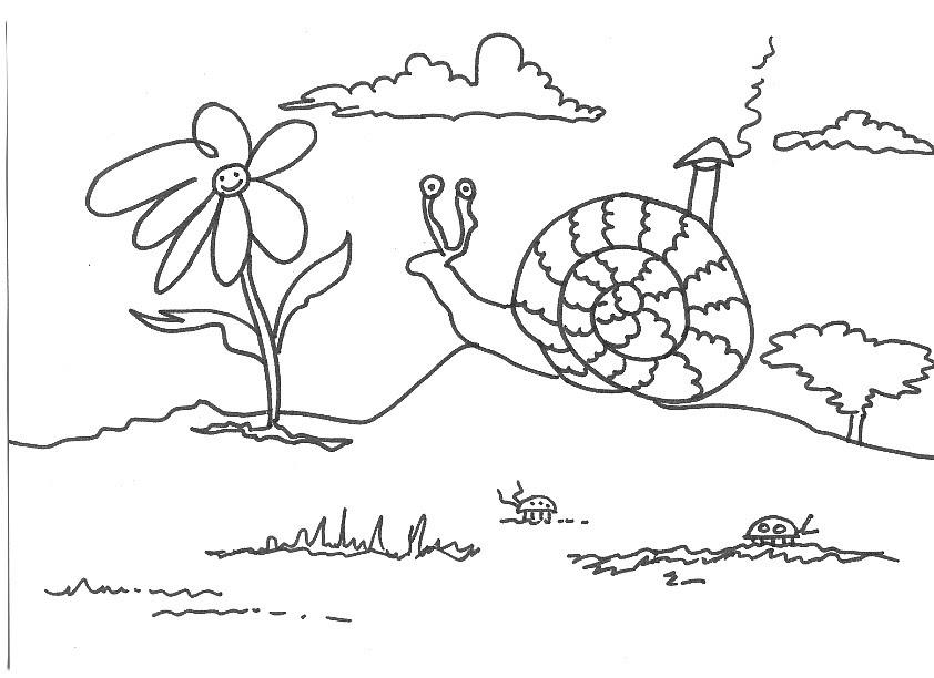 Dibujos Infantiles De Caracoles Para Colorear: Dibujos Infantiles Para Colorear: Dibujo Para Imprimir Y
