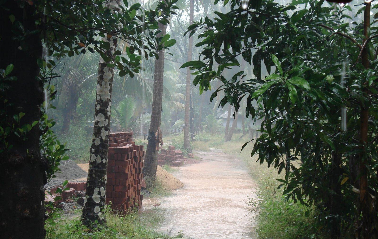 Hd Wallpaper Monsoon Aadyam
