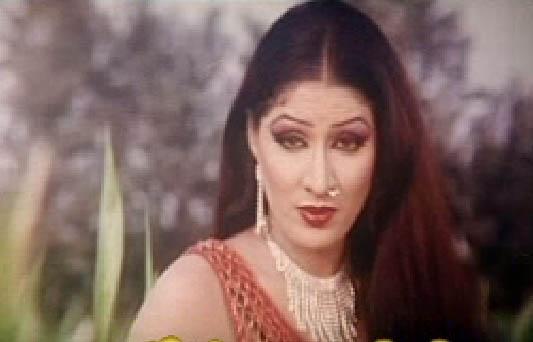The Best Artis Collection Pakistani Pashto-Punjabi-Urdu -6736