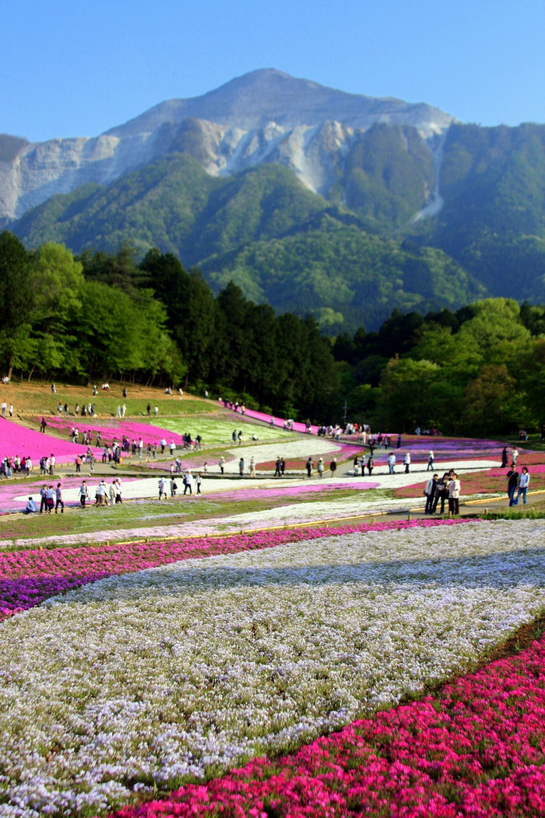 The Spring Essentials You Need To Nail French Girl Style: Japan – Tokyo, Hot Spring