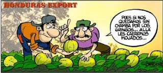 Banegas melon worker cartoon