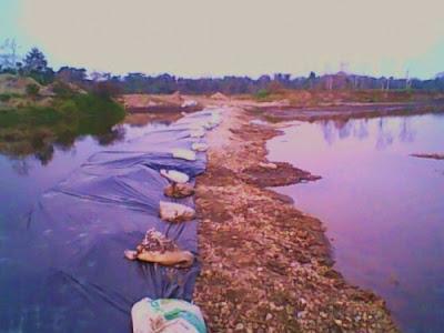 san carlos de guaroa rio guamal meta colombia palma africana robo paramilitares masacre blog