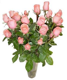 Florerias Flores Y Regalos Venta Y Envio De Flores A