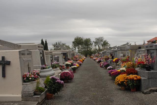 Kuburan Berbunga Krisan