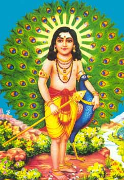Cute Baby Comments Wallpapers Cute Pictures Of Lord Muruga
