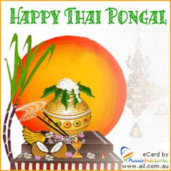 Cute Baby Wallpaper With Quotes Pongal Greetings