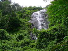 Kerala high range nature