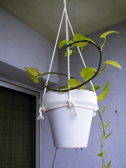 Handmade hanging flower pot holder