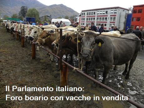 le mie idee le nostre idee guarda cos 39 diventato il On cos à il parlamento italiano