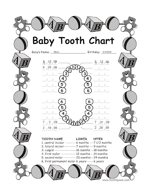 infant tooth chart