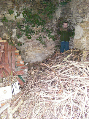 pile of drying kindling wood in detached outbuilding dry stone wall