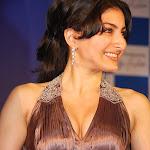 Hot Royal Bollywood Actress Soha Ali Khan Spicy Pics