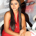 Unseen Pictures Of Telugu Actress Shweta Basu   Hot And Spicy In Red