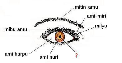 Apatani language