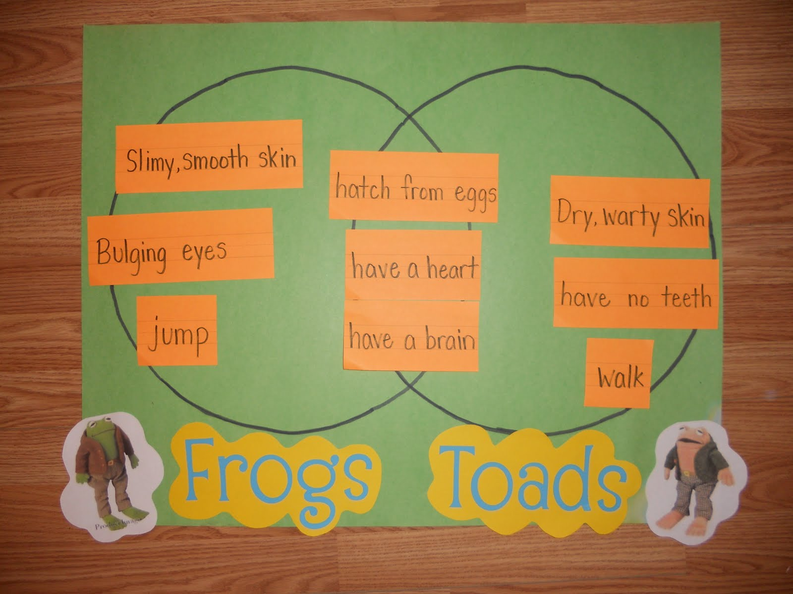 Frog And Toad Venn Diagram Home Electrical Wiring Diagrams India Life In First Grade Plant A Garden