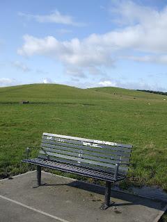 The Town Moor