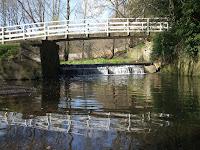 The White Bridge in Jesmond Dene
