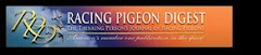 Racing Pigeon Digest
