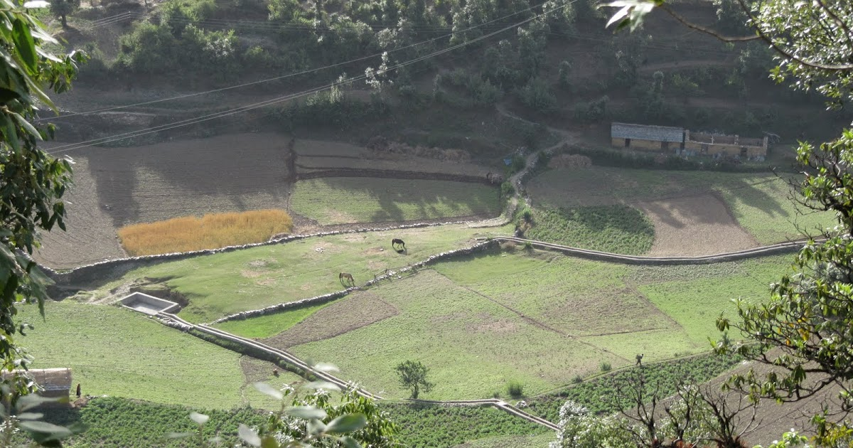 Wanderlust Chamoli Glimpses Of Village Life
