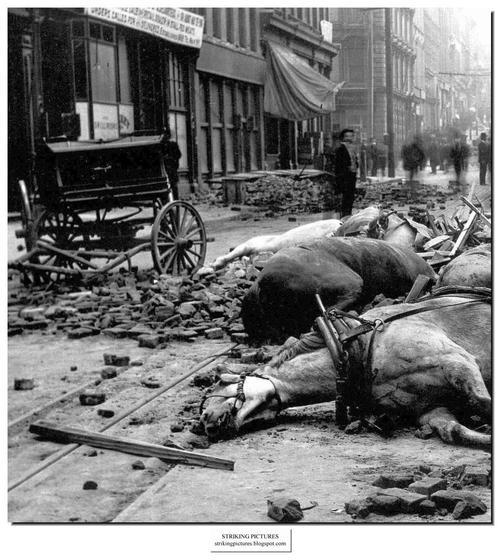 earthquake san francisco 1906 The 1906 san francisco earthquake struck on april 18 with an estimated magnitude of 78 the temblor was followed by major fires that lasted for several days the toll was high, about 3,000 people.