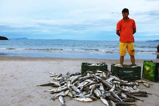 pesca artesanal en Brasil