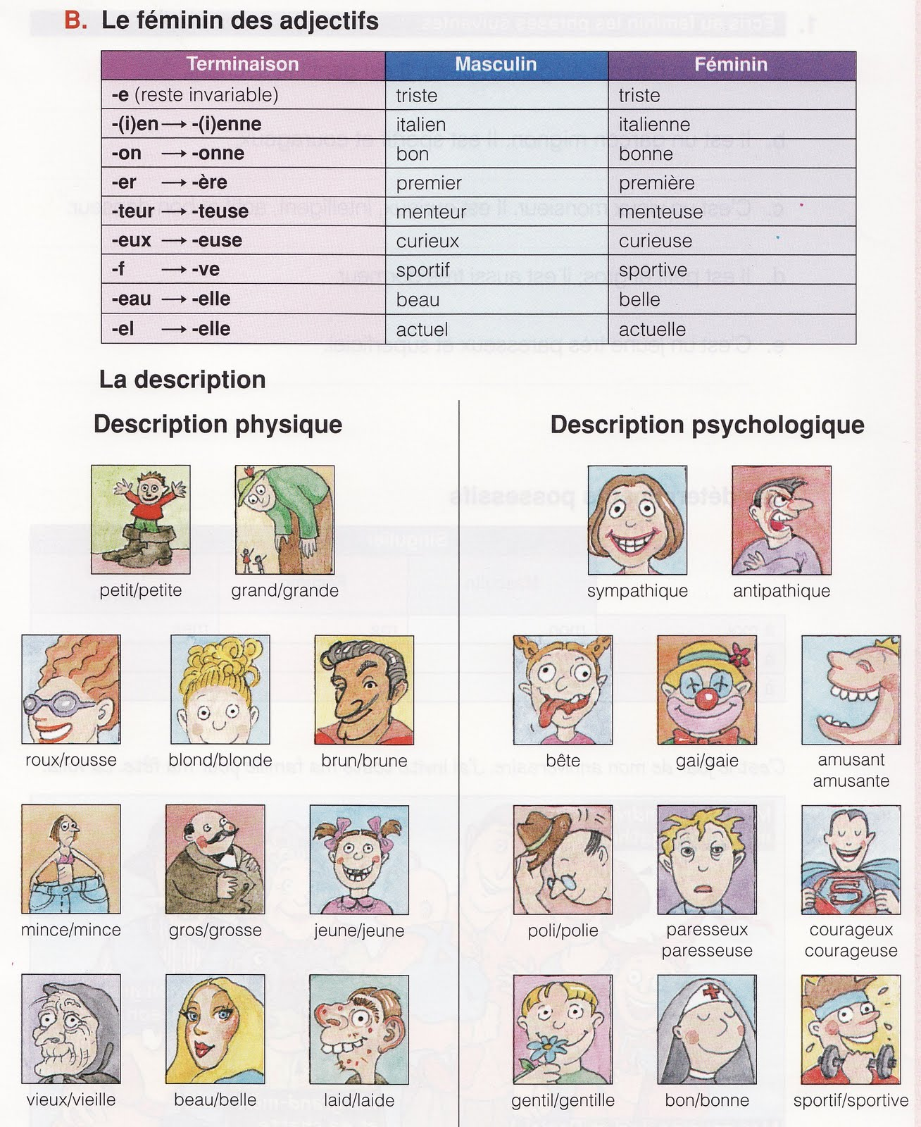 Pratiquons Le Francais La Formation Du Feminin