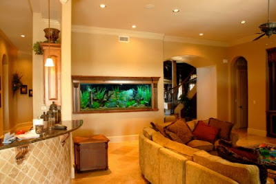 House Decoration Ornamental Fish Tanks For Homes Or