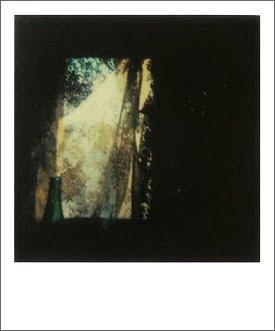 Pachadesign Old Blog Instant Light Tarkovsky Polaroids