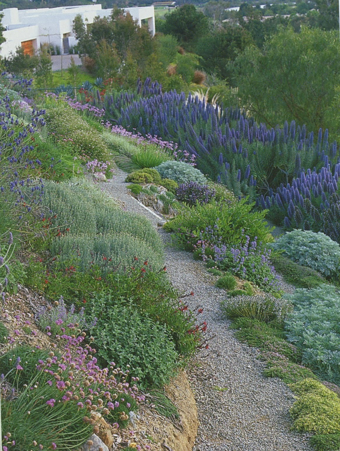 The Rusted Trowel: Landscaping Hillsides on Backyard Hill Landscaping Ideas  id=80329