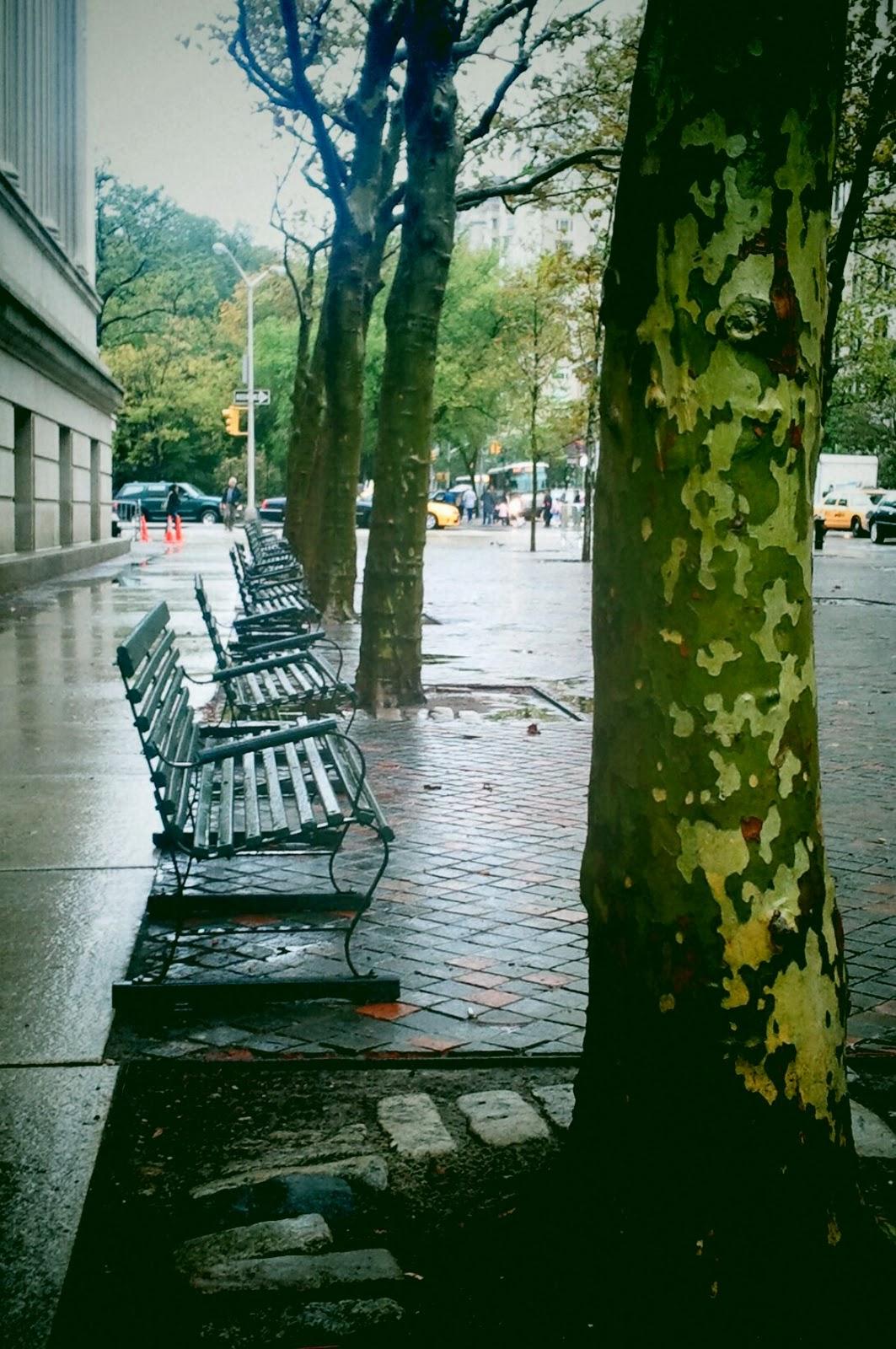 Madeline Kahn Bench Central Park