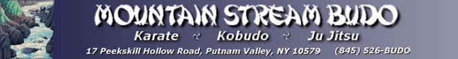 Mountain Stream Budo Weblog