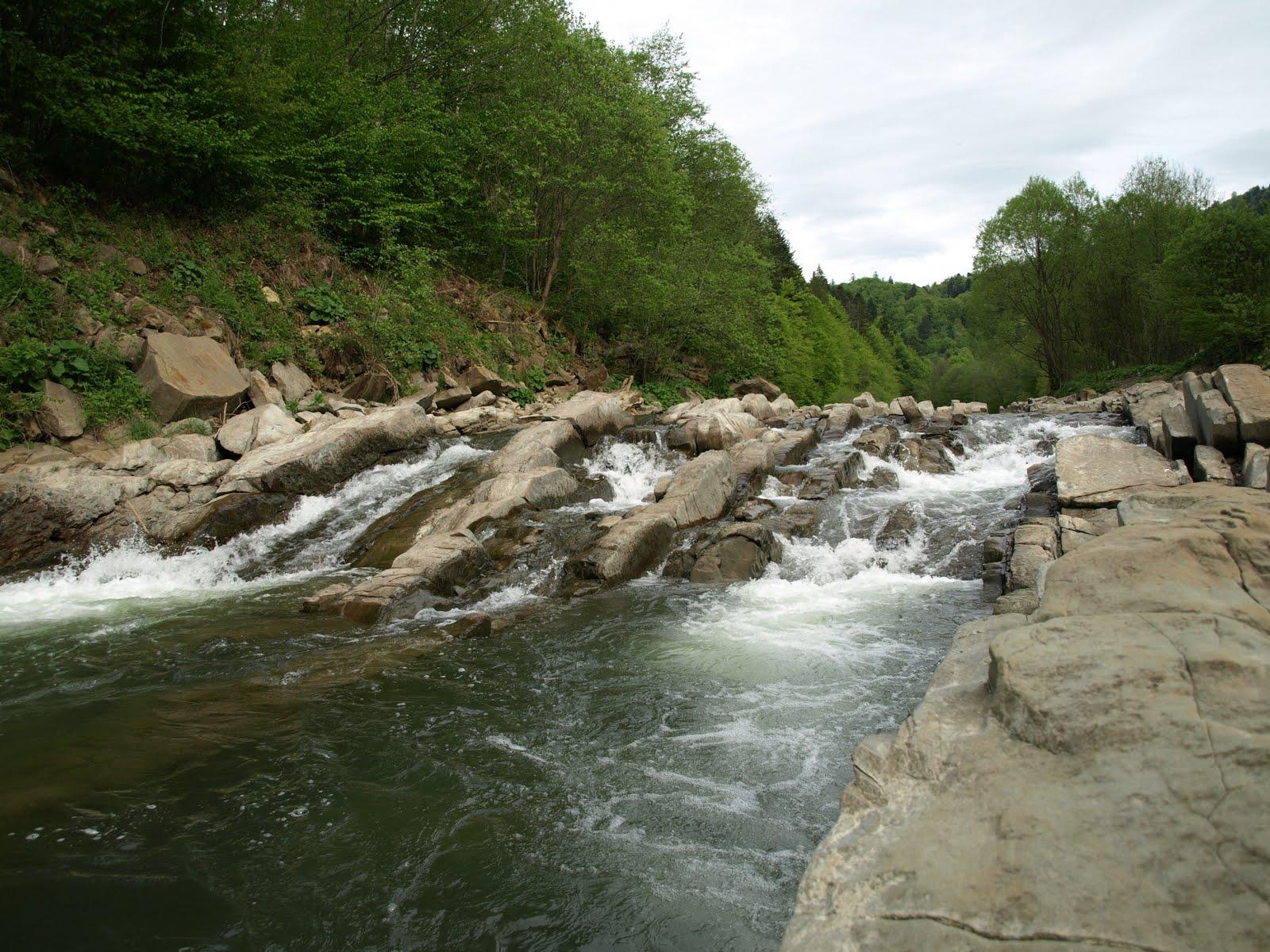Progi skalne na Wetlinie w rezerwacie Sine Wiry, Bieszczady