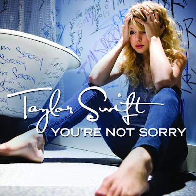 taylor swift you re not sorry mp3 free download