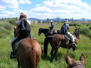 Cavalli a Yellowstone